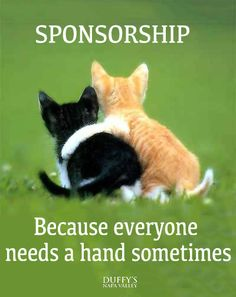 aa_sponsor